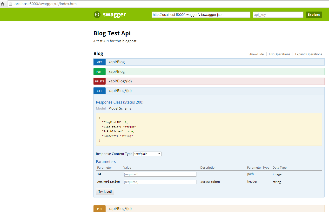 Swagger UI with Authorization field